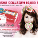 sasha_collagen-10000-pantip