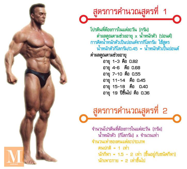 การคำนวนโปรตีนที่ร่างกายต้องการ