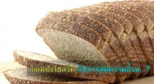 wholewheat ลดความอ้วน ขนมปังโฮลวีต