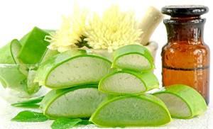 4-Aloe-Vera-Benefits-For-Hair