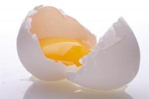 egg_4
