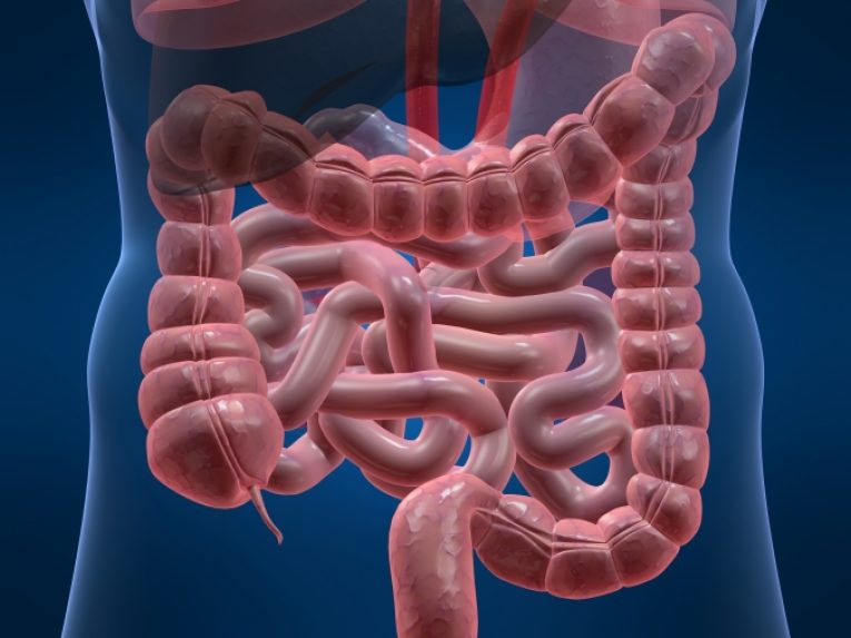 Диета при дивертикулезе толстого кишечника: принципы