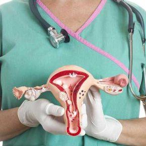มะเร็งรังไข่ ovarian cancer สาเหตุ อาการ วิธีการรักษา