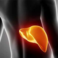 hepatitis ไวรัสตับอักเสบบี อาการ pantip