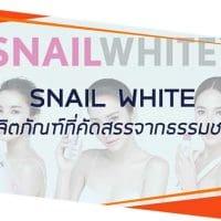 รีวิว ครีม snail white
