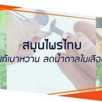 สมุนไพรไทยแก้เบาหวาน ลดน้ำตาลในเลือด