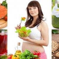 food for pregnancy