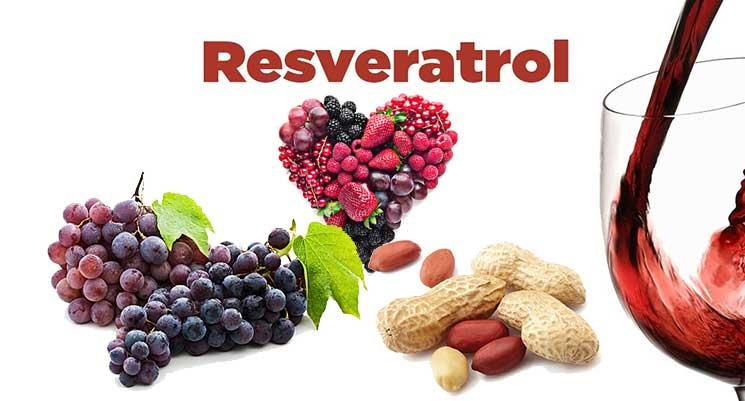 Resveratrol เรสเวอราทรอล สารสกัดจากไวน์แดง มีประโยชน์อย่างไร