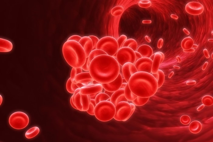 ภาวะเม็ดเลือดแดงป่องพันธุกรรม