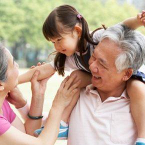 โปรตีนสำหรับผู้สูงอายุ