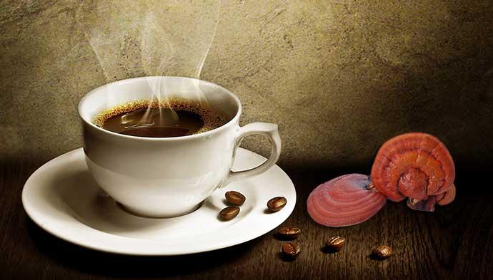 กาแฟเห็ดหลินจือ ยี่ห้อไหนดี